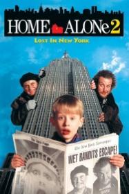 寶貝智多星2之玩轉紐約